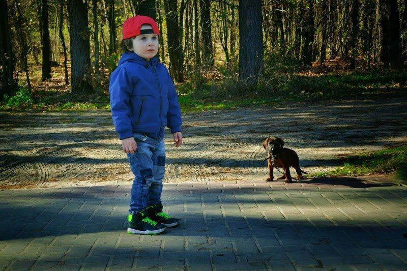 Na szybko – czym różni się szczeniak od dziecka?