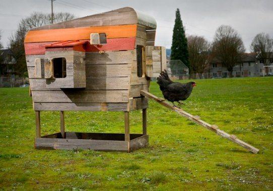 chicken-coop-slideshow-drmcdreamy-moderncoop_7bfd1de13f8ad673e0e5772b22ca45c6_3x2_jpg_570x380_q85