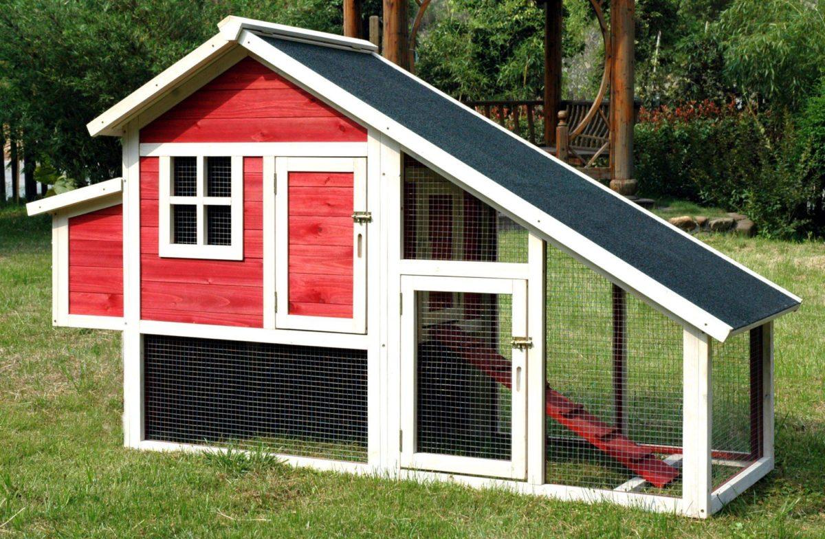 chicken-coop1