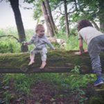 Moje dzieci mieszkają w lesie i nie ma dla nich lepszego miejsca na ziemi