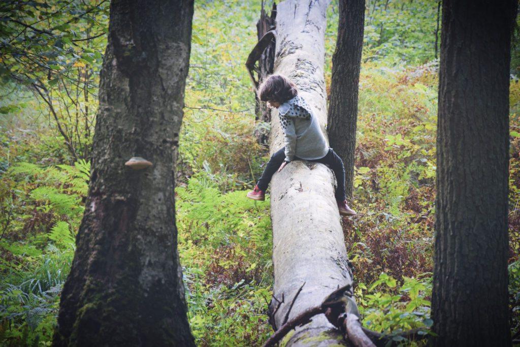 Kiedy nie mogę wytrzymać z dziećmi, wyrzucam je do lasu. I one to lubią!